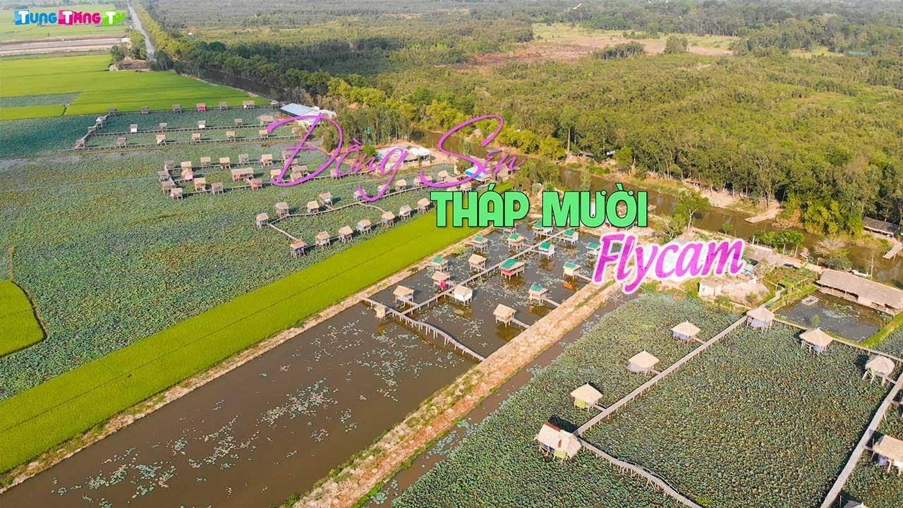 flycam-dong-sen-thap-muoi-dong-thap