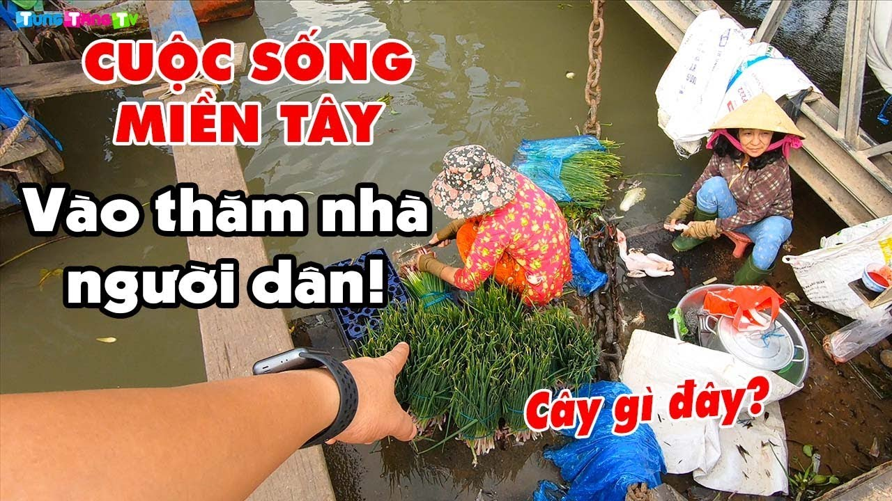 kham-pha-cuoc-song-nguoi-mien-tay-tren-song-nuoc