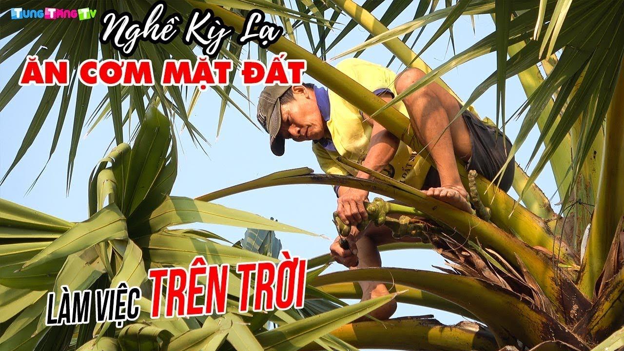kham-pha-nghe-ky-la-an-com-mat-dat-lam-viec-tren-troi