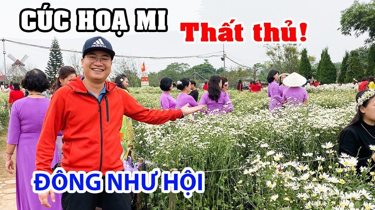 cuc-hoa-mi-that-thu-voi-nguoi-dep-tai-ha-noi-du-lich-ha-noi