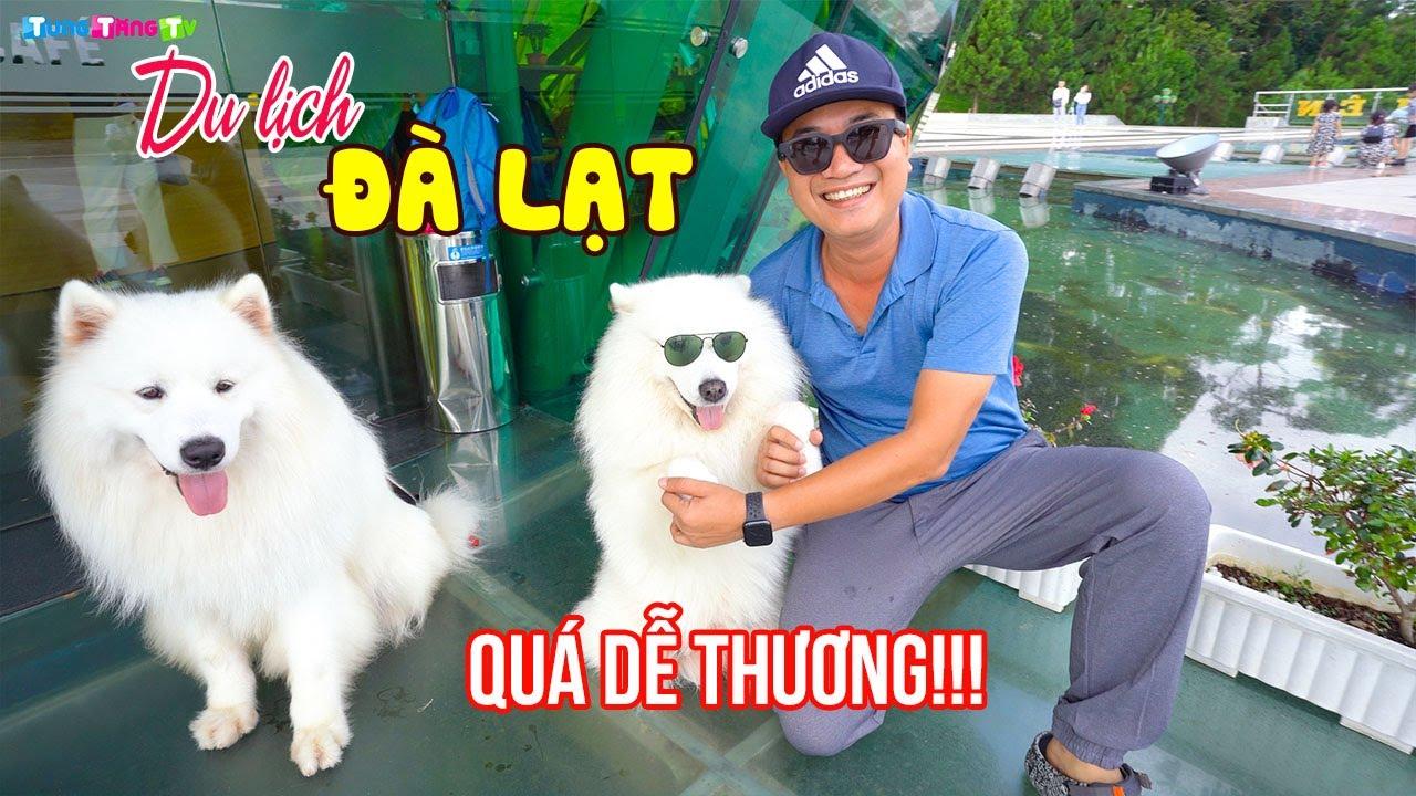 nhung-dieu-bat-ngo-ve-ten-goi-da-lat-it-ai-biet