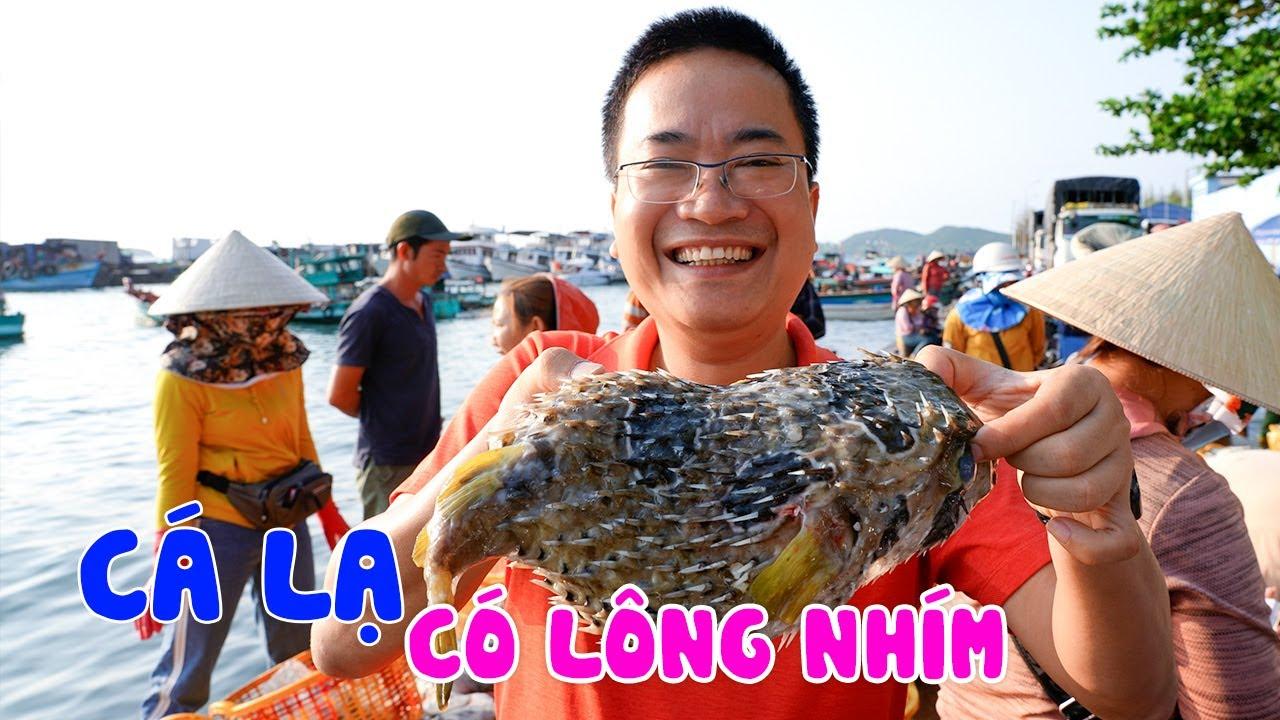 DU LỊCH PHÚ QUỐC | Khám phá Cảng Cá An Thới lâu đời nhất Đảo Ngọc toàn Hải Sản Khổng Lồ và Lạ